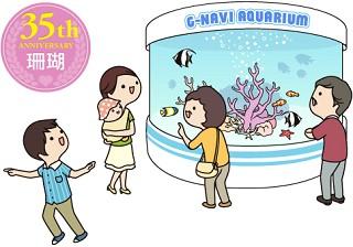 35周年 珊瑚婚式の名前の意味と関連するプレゼント