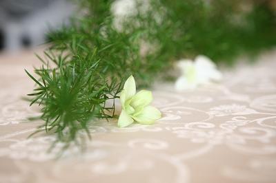 盛夏に行った結婚式のため、お庭のグリーンとリンク